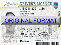 how to make a fake drivers license number