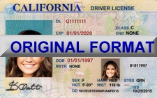 California Fake ID
