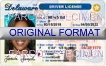 Delaware Fake ID Template Small