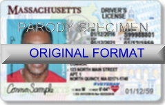 Massachusetts Fake ID Template Small