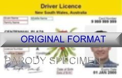 New South Wales Fake ID