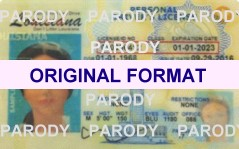 LOUISIANA FAKE DRIVERS LICENSE ID, SCANNABLE LOUISIANA DRIVERS LICENSE WITH HOLOGRAMS