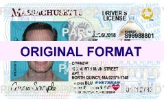 Massachusetts DRIVER LICENSE ORIGINAL FORMAT, DESIGN SPECIFICATIONS, NOVELTY SECURITY CARD PROFILES, IDENTITY, NEW SOFTWARE ID SOFTWARE Massachusetts driver