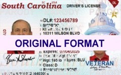 SOUTH CAROLINA DRIVER LICENSE ORIGINAL FORMAT, DESIGN SPECIFICATIONS, NOVELTY SECURITY CARD PROFILES, IDENTITY, NEW SOFTWARE ID SOFTWARE